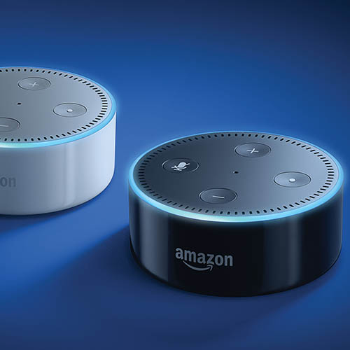 Smart speakers corner the market